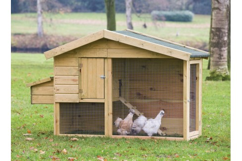 Kippen verblijf Barnevelder